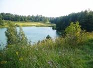 Коттеджный поселок Новоселье